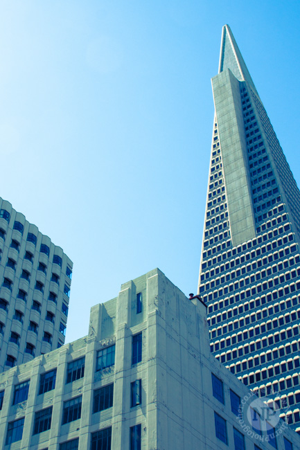 The Transamerica Building