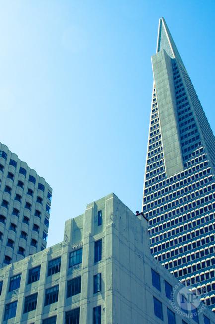 The Transamerica Building